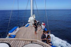 Enjoying some time on deck while cruising from one island on our Galapagos adventure!